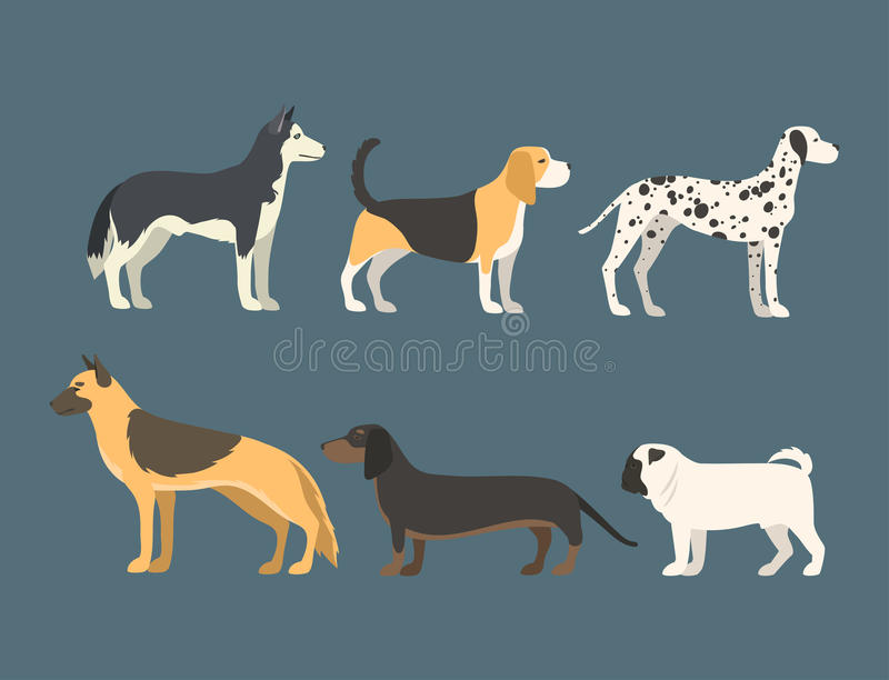 Funny cartoon dog character bread in flat style puppy pet animal doggy vector illustration. royalty free illustration