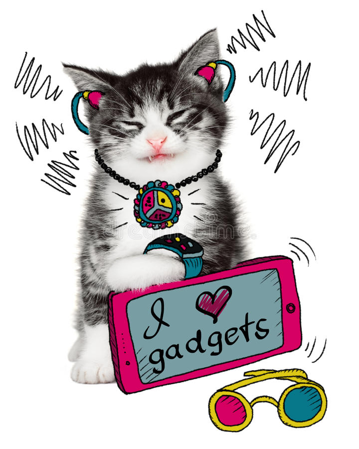 Funny cat loves his gadgets royalty free stock image