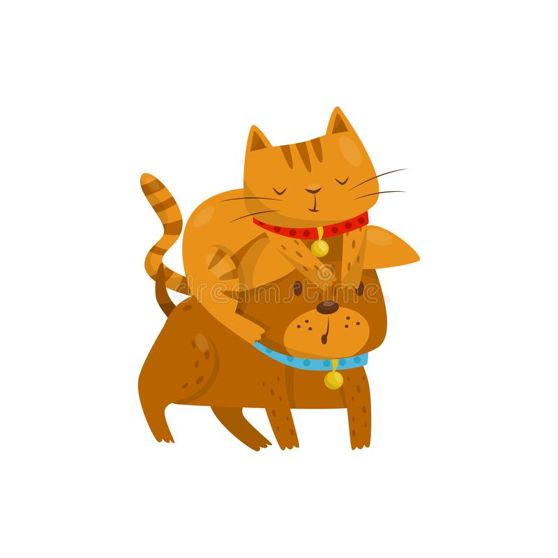 Funny cat sitting on the head of a dog, cute domestic pet animals cartoon characters, best friends vector Illustration royalty free illustration