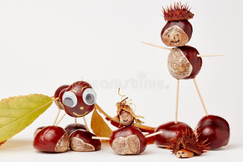 Funny chestnut tinker man. With chestnut figures in autumn royalty free stock images