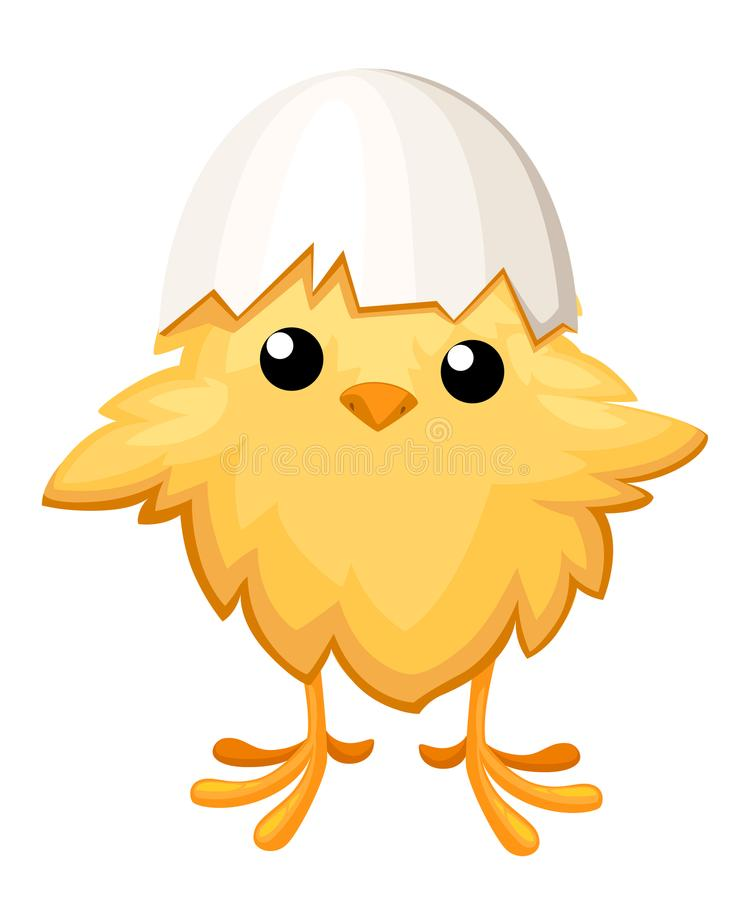 Funny chicken in egg for easter decoration cartoon flat clipart yellow bird in an egg shell illustration on white ba stock illustration
