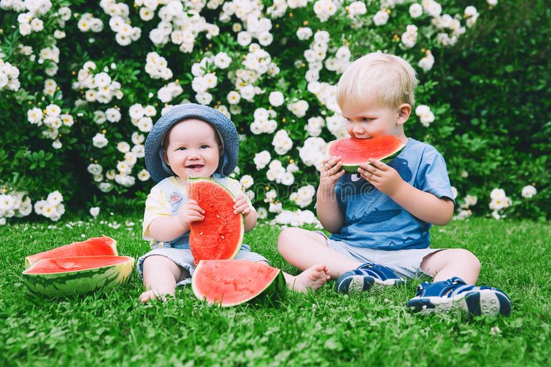 Funny children eating watermelon on nature at summer. Funny little kids eating watermelon on green grass on nature at summer day. Brother and sister outdoors royalty free stock photo