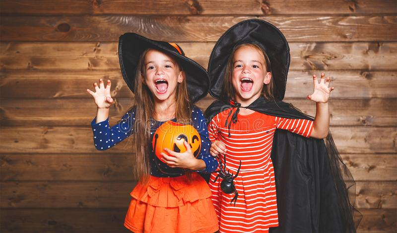 Funny children sister twins girl in witch costume in halloween. Laughing funny children sister twins girl in a witch costume in halloween stock photo