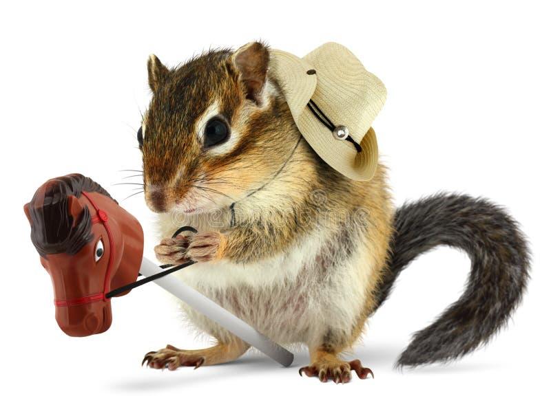 Funny chipmunk cowboy royalty free stock image