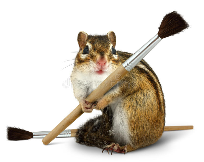 Funny chipmunk hold paint brush royalty free stock images
