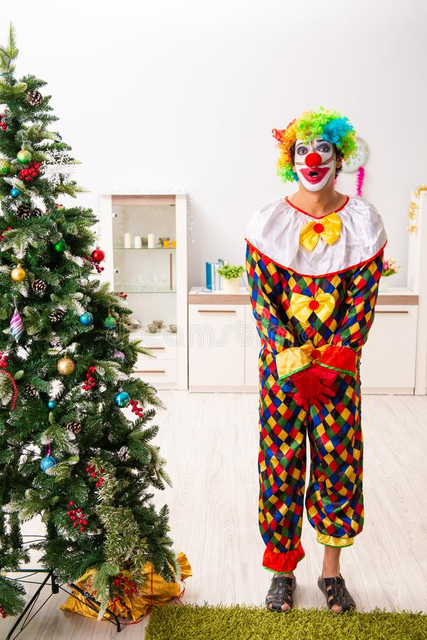 Funny clown in Christmas celebration concept. The funny clown in christmas celebration concept royalty free stock photos