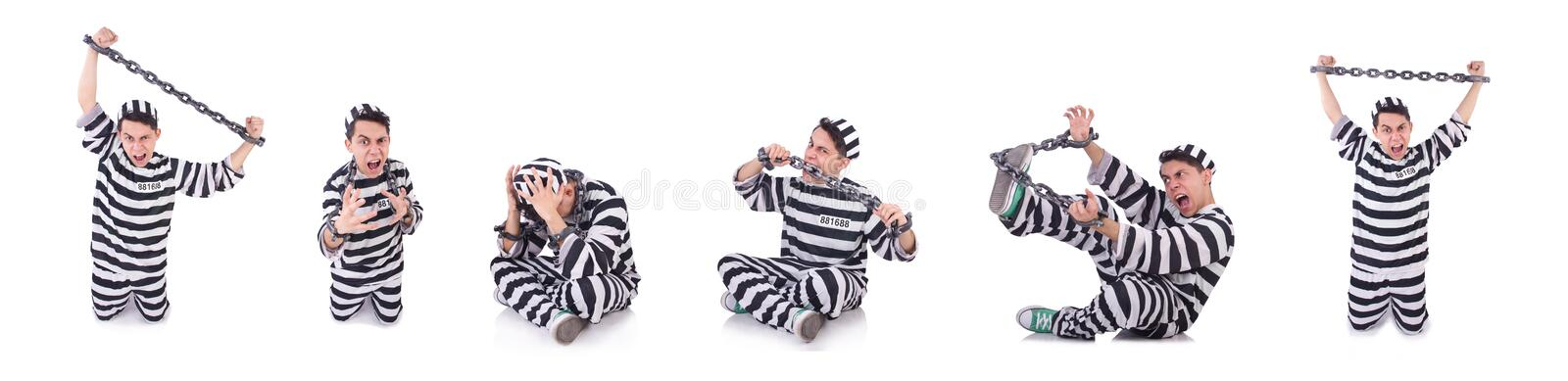 Funny convict isolated on the white. The funny convict isolated on the white stock image