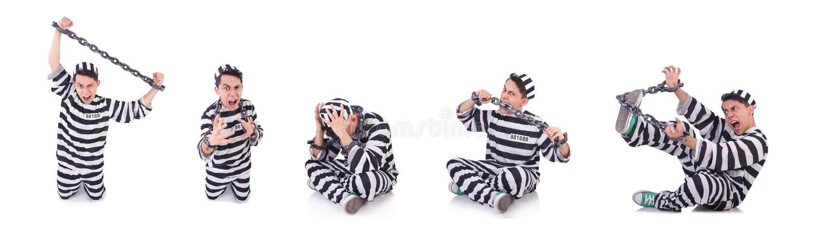 Funny convict isolated on the white. The funny convict isolated on the white royalty free stock photos