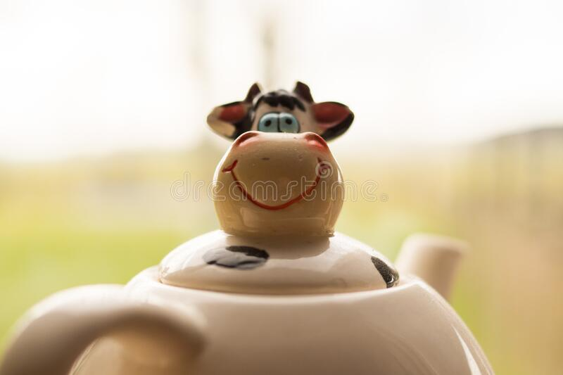Funny Cow Face On Teapot Free Public Domain Cc0 Image