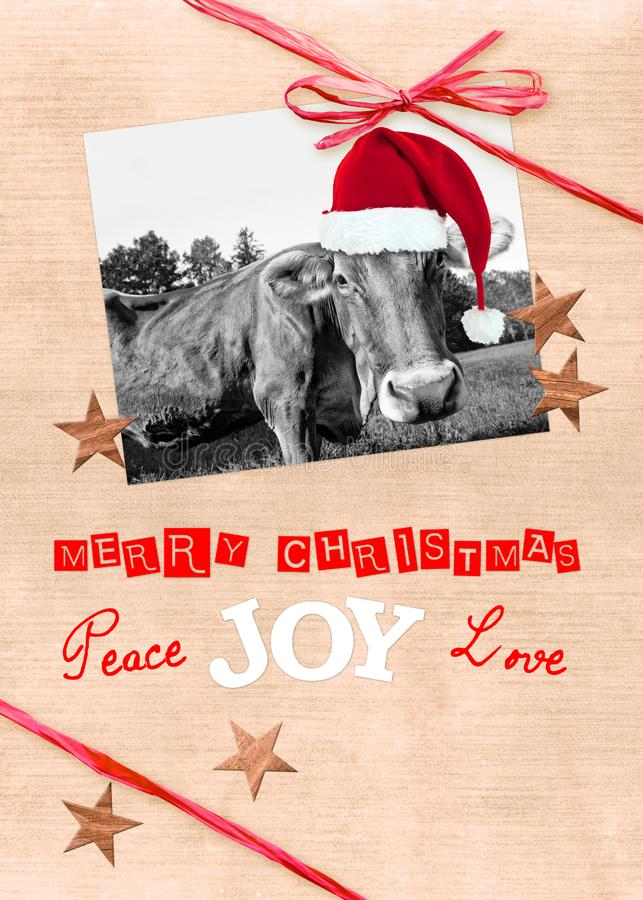 Funny cow with a Santa hat christmas greeting card, handmade collage with a red ribbon, text merry christmas, peace joy love stock photos