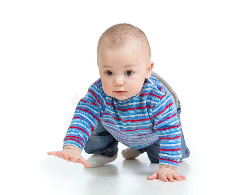 Funny crawling baby over white background. Funny baby goes down on all fours royalty free stock image