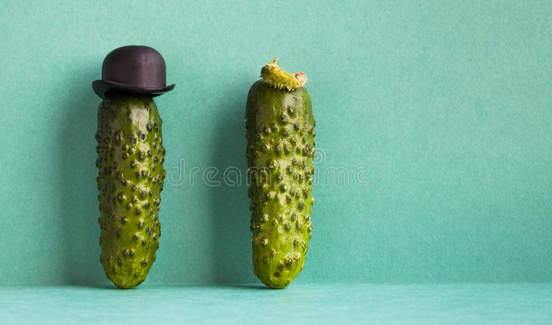 Funny cucumber vegetables old fashioned character with black bowler hat. green background, creative design food poster. Template. Copy space stock photography