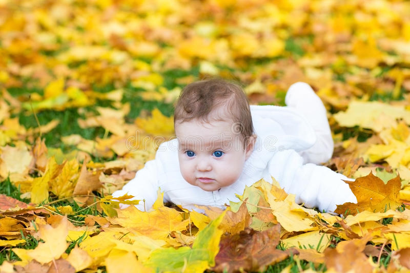 Funny cute baby girl in autumn park on yellow leafs royalty free stock photos