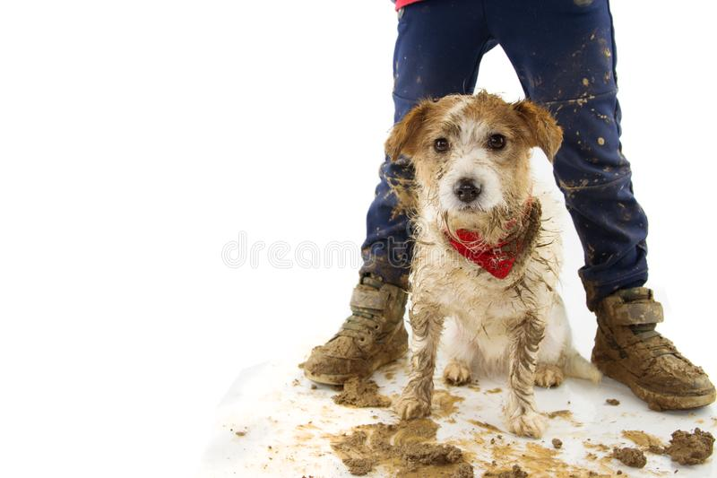 FUNNY DIRTY DOG AND CHILD. PUPPY AND BOY WEARING BOOTS AFTER PLAY IN A MUD PUDDLE. ISOLATED STUDIO SHOT AGAINST WHITE BACKGROUND.  stock images