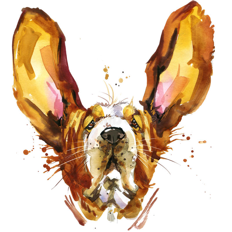 Funny dog basset fashion T-shirt graphics. dog illustration with splash watercolor textured background. Unusual illustration watercolor puppy dog for fashion