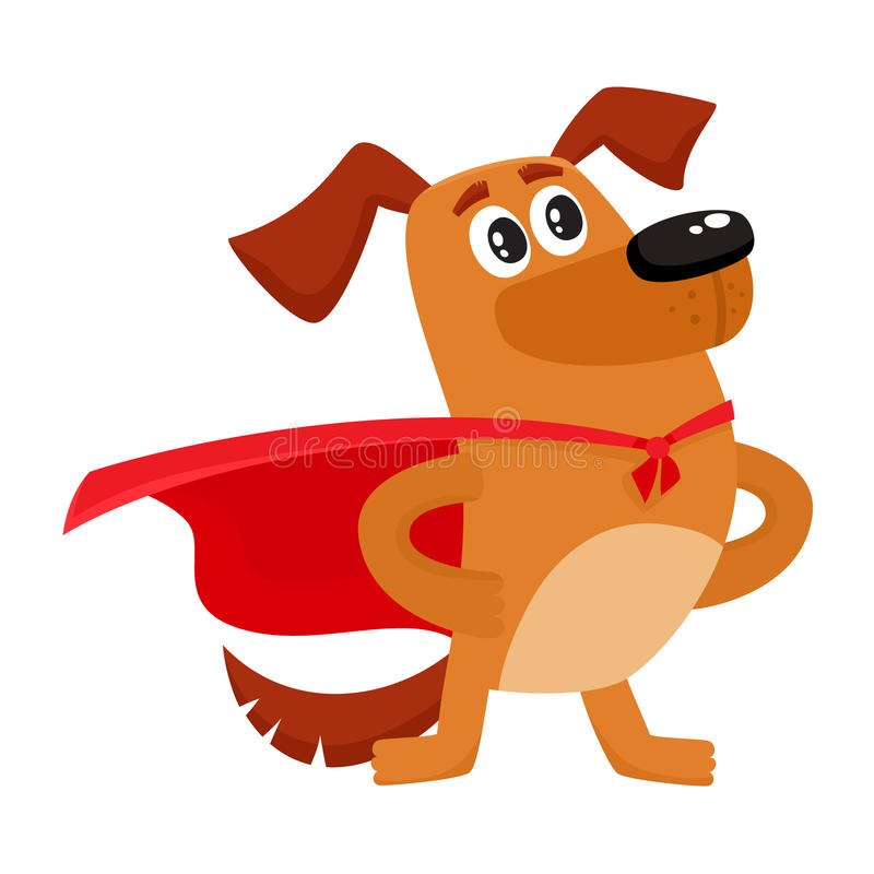 Funny dog character in red cape standing as hero. Cute brown funny dog, puppy character in red cape standing as hero, superhero, cartoon vector illustration vector illustration