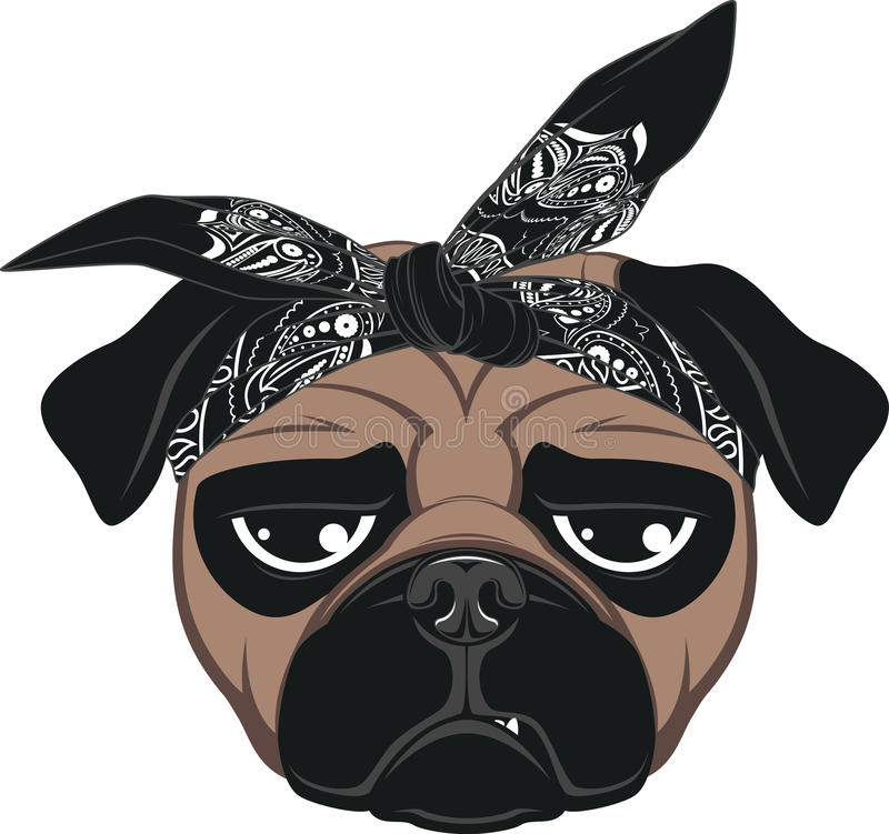 Funny dog. Vector illustration of funny pug smiling on a white background