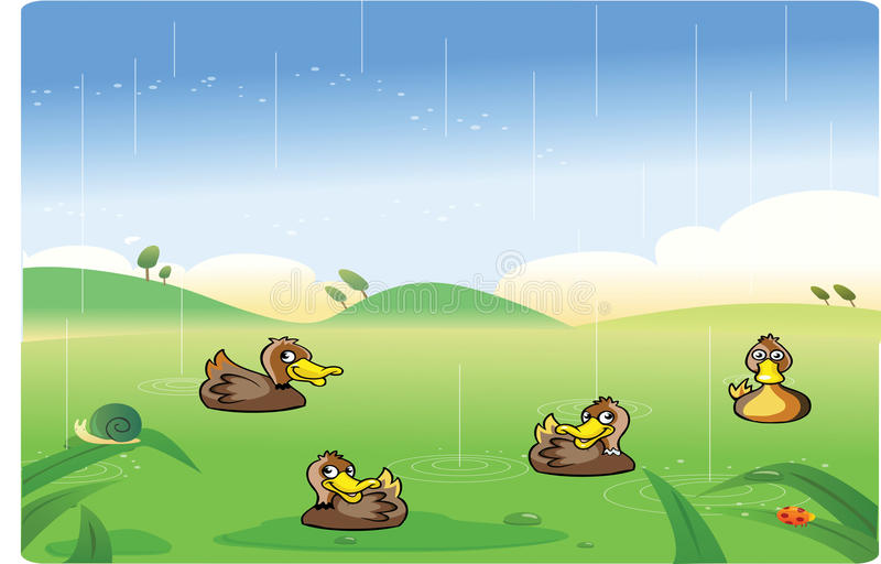 Funny ducks cartoon playing. In the rain vector illustration