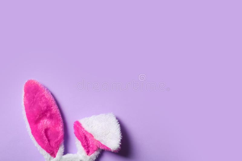 Funny Easter bunny ears on color background, top view. With space for text stock photos