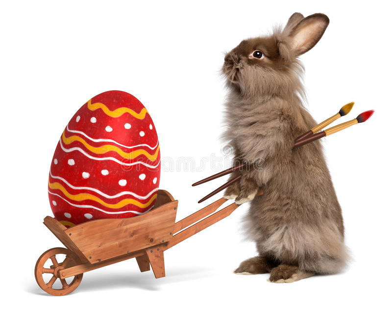 Funny Easter bunny rabbit with a wheelbarrow and a red Easter egg royalty free stock photo