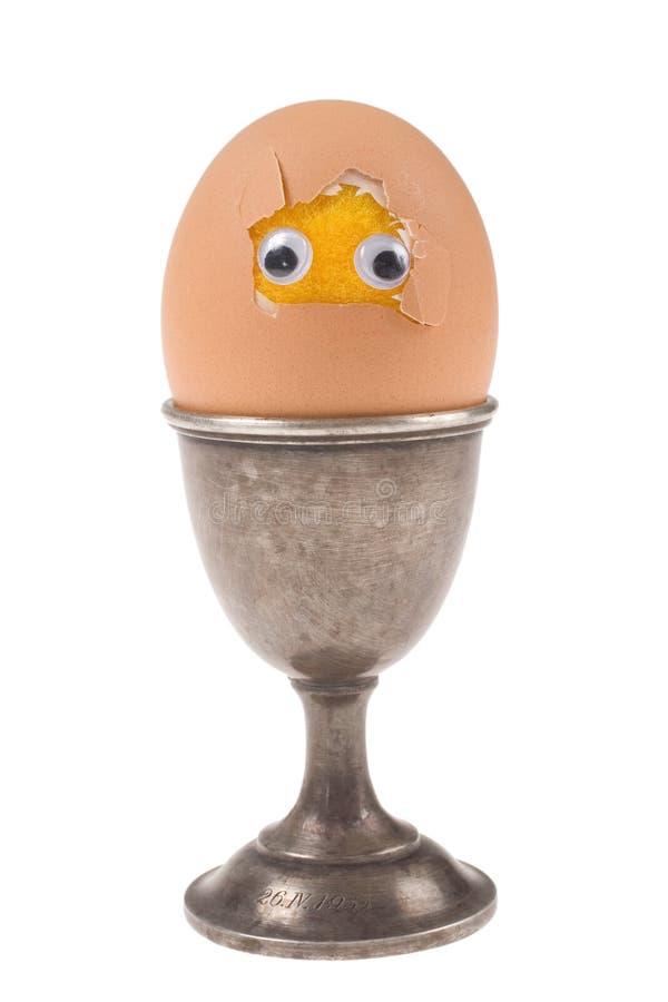 Funny egg on white background royalty free stock photo