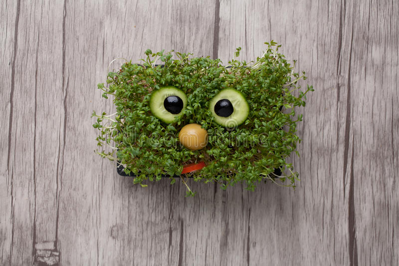 Funny face made of crest salad on wooden board royalty free stock images
