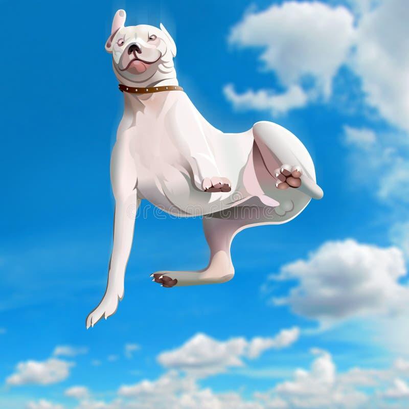 Free Funny Falling Dog Stock Photo - 46916610