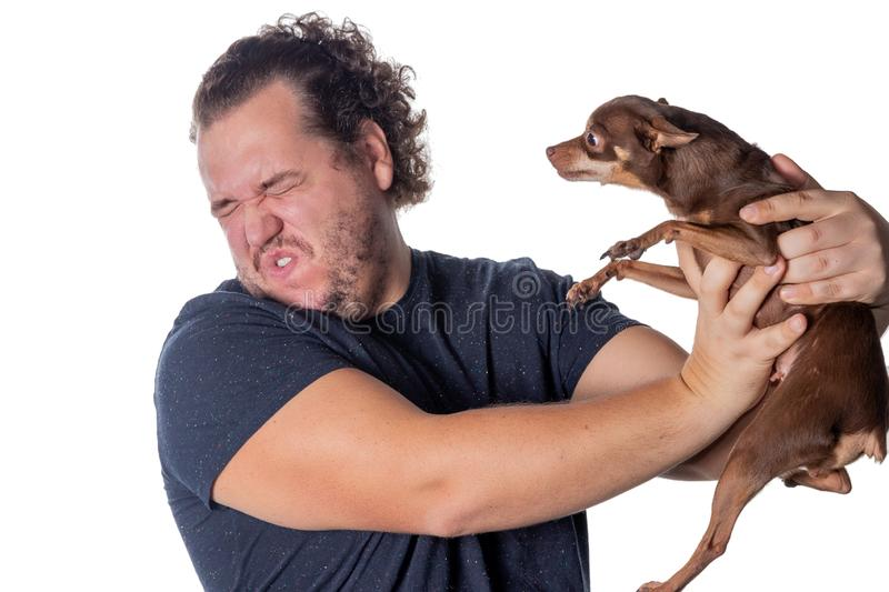 Funny fat man poses with little dog on white background. Funny fat man with little dog stock photo