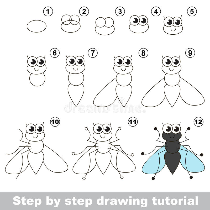 Funny Fly. Drawing Tutorial. Stock Vector - Illustration of ...