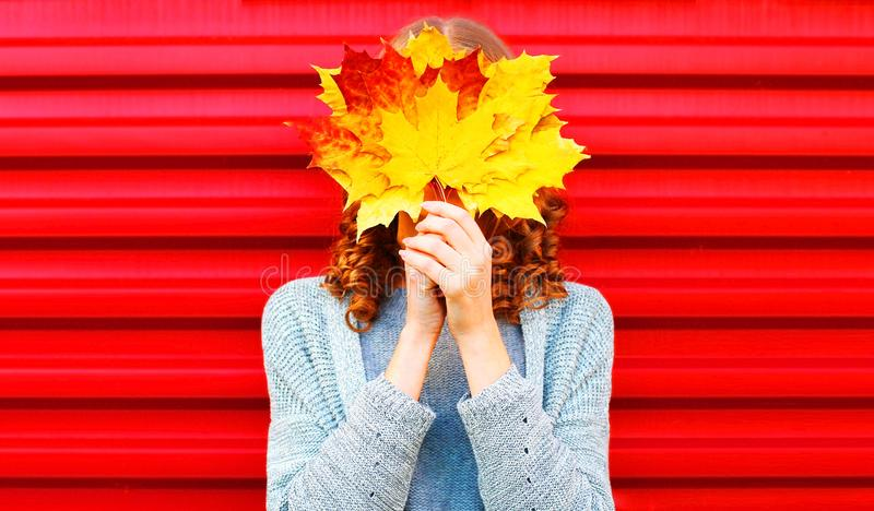 Funny girl hides her face yellow maple leaves royalty free stock images