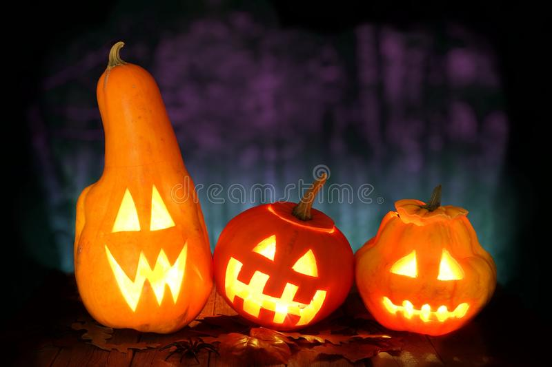 Funny Halloween Jack o Lanterns with spooky night background. Funny Halloween Jack o Lanterns at night with spooky forest background stock image