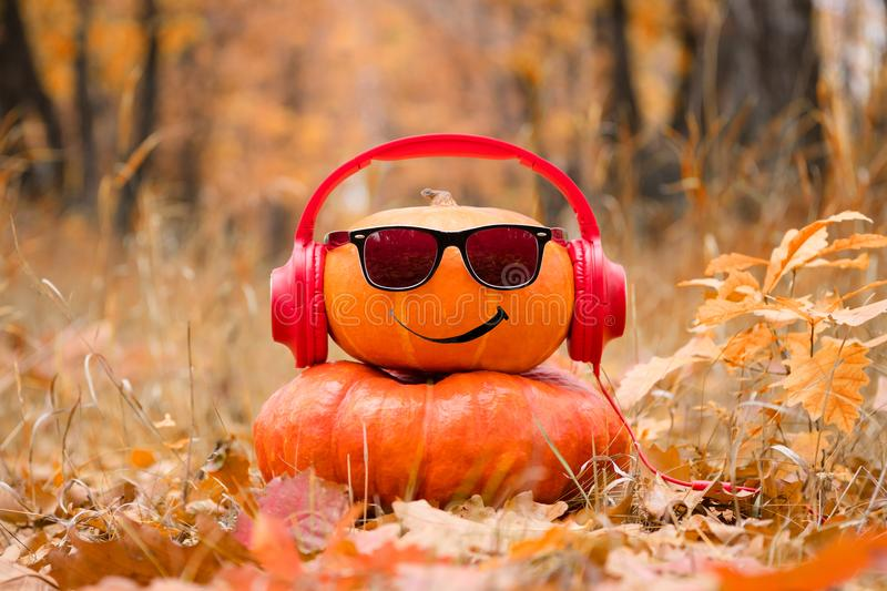 Funny Halloween. Pumpkin in sunglasses in the autumn Park. stock images