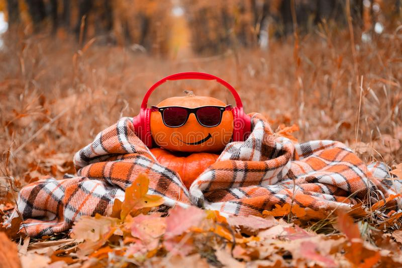 Funny Halloween. Pumpkin in sunglasses in the autumn Park. royalty free stock images