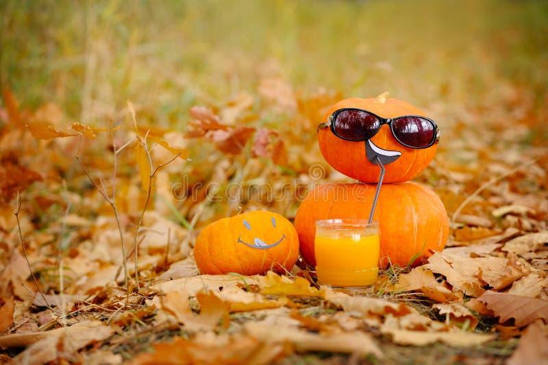 Funny Halloween. Pumpkin in sunglasses drinking juice. stock photography