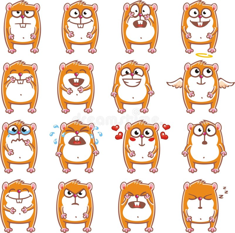 Funny hamsters (2) royalty free stock images