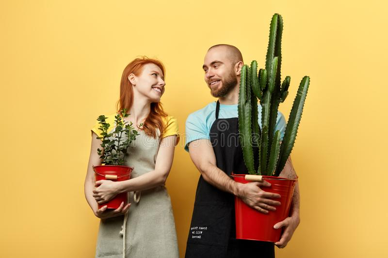 Funny happy young man and woman holding flowers and looking at each other royalty free stock photos