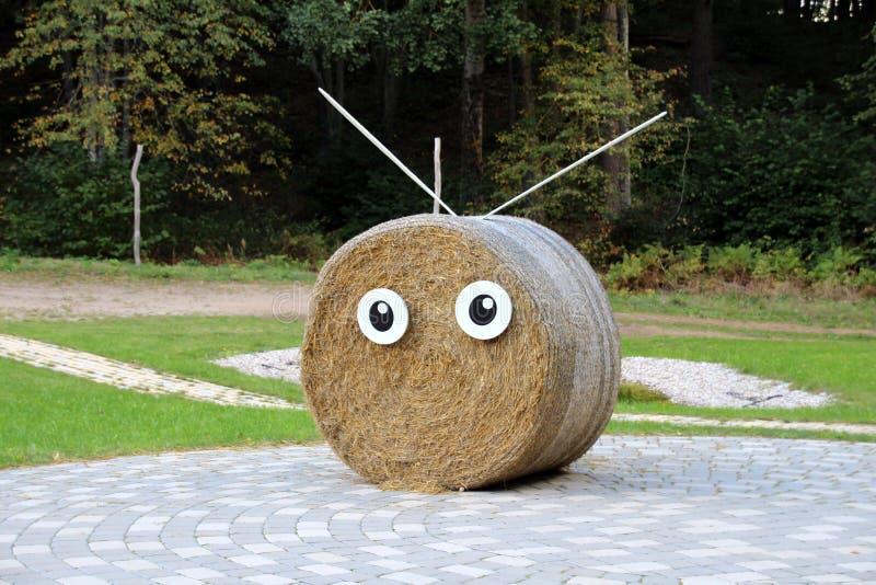 Funny hay roll stock photos