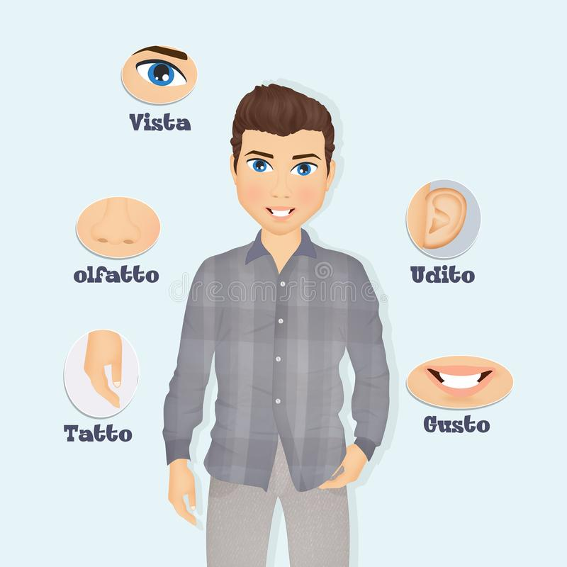 Illustration of five senses stock illustration