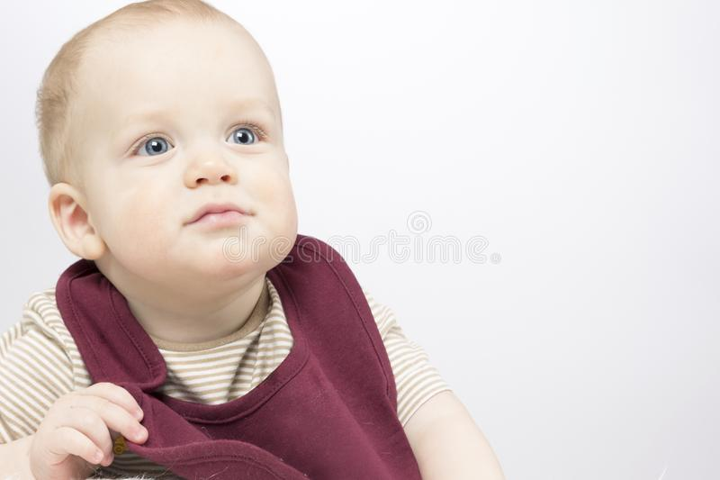 Funny Infant baby posing in bib. Copy space. Studio shot stock photography