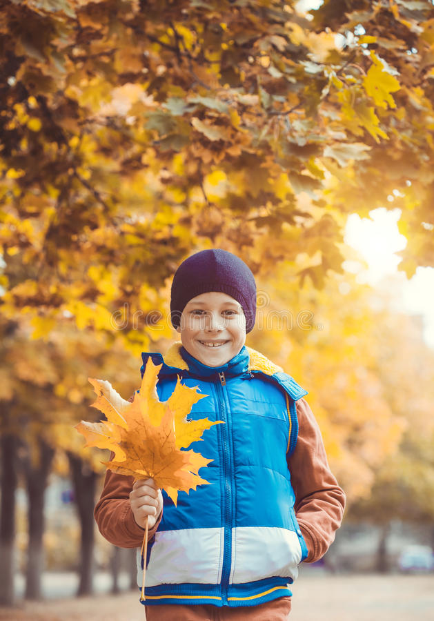 Funny kid on a background of autumn trees royalty free stock photo