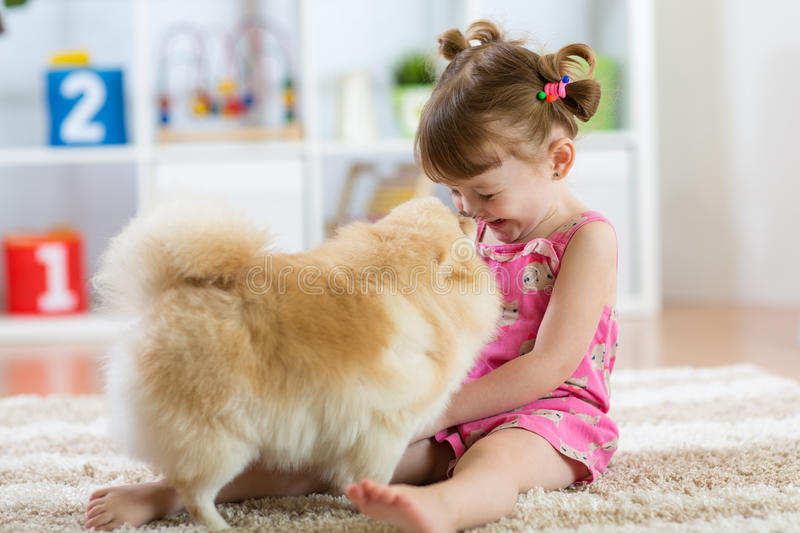 Funny kid with dog Spitz at home royalty free stock photography