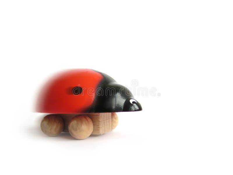 Funny ladybird. Funny quick ladybird on the race stock photo