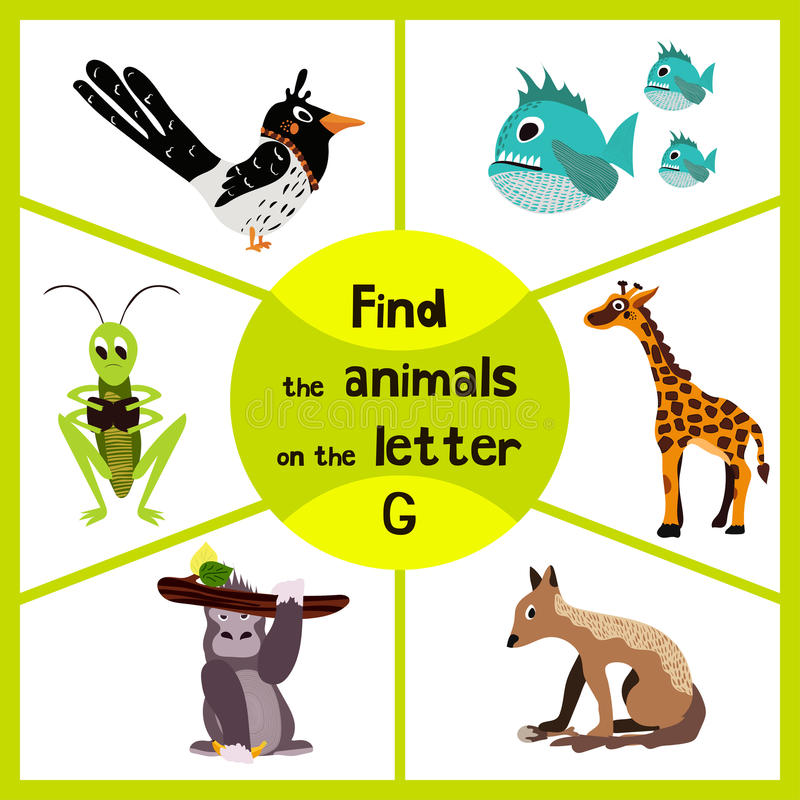 Free Funny Learning Maze Game, Find All 3 Cute Wild Animals With The Letter G, Tropical Gorilla, Giraffe From Savannah And Grasshopper Stock Photos - 64926573