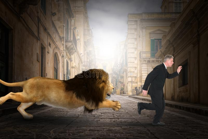 Funny Lion Chase Businessman, City. Funny scene of a lion chasing a businessman in the concrete jungle of a city street. Abstract concept for urban nature royalty free stock image