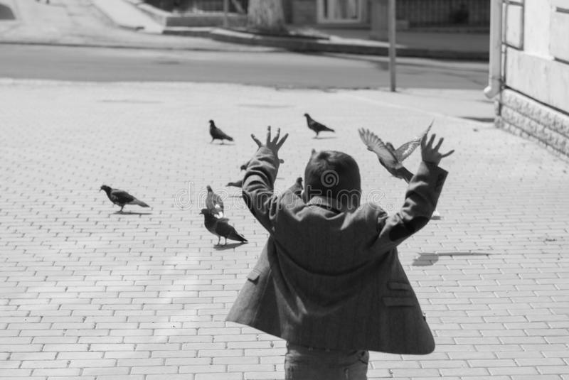 Funny little boy in a jacket scares pigeons. Running towards them royalty free stock photography