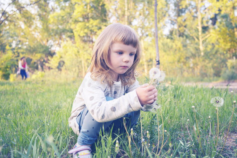 Funny little girl, with serious face, is looking at a dandelion royalty free stock photo