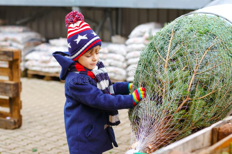 Funny little smiling kid boy holding Christmas tree on market. Happy healthy child in winter fashion clothes choosing stock image