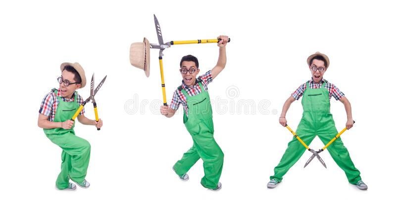Funny man with shears on white stock photos