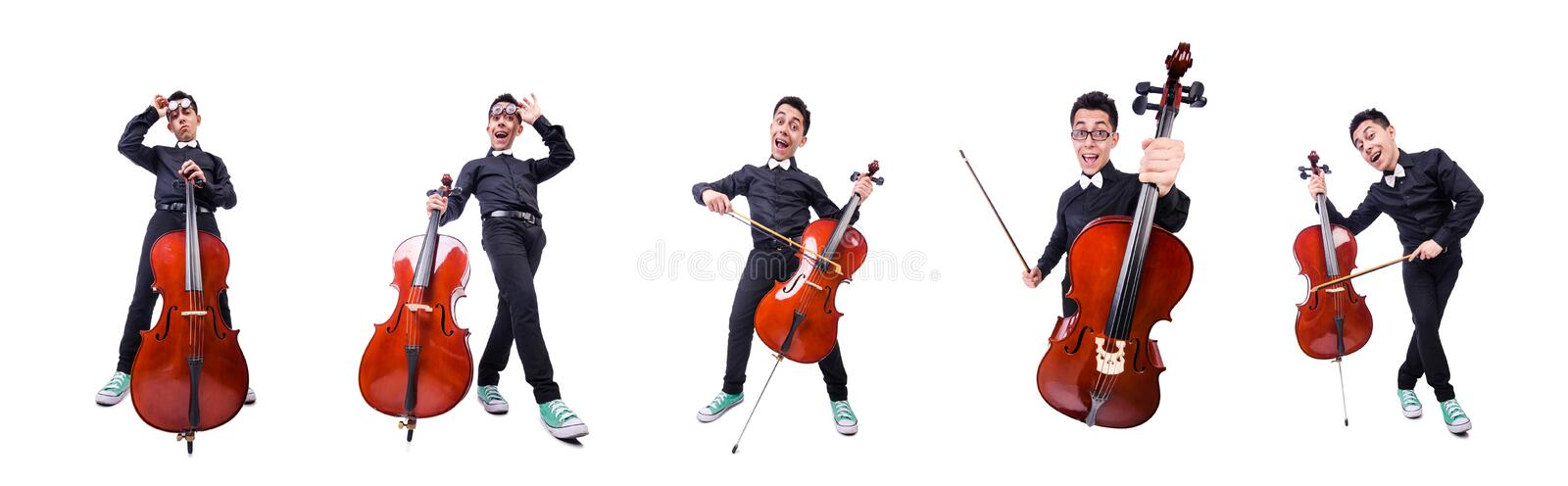 Funny man with violin on white royalty free stock images