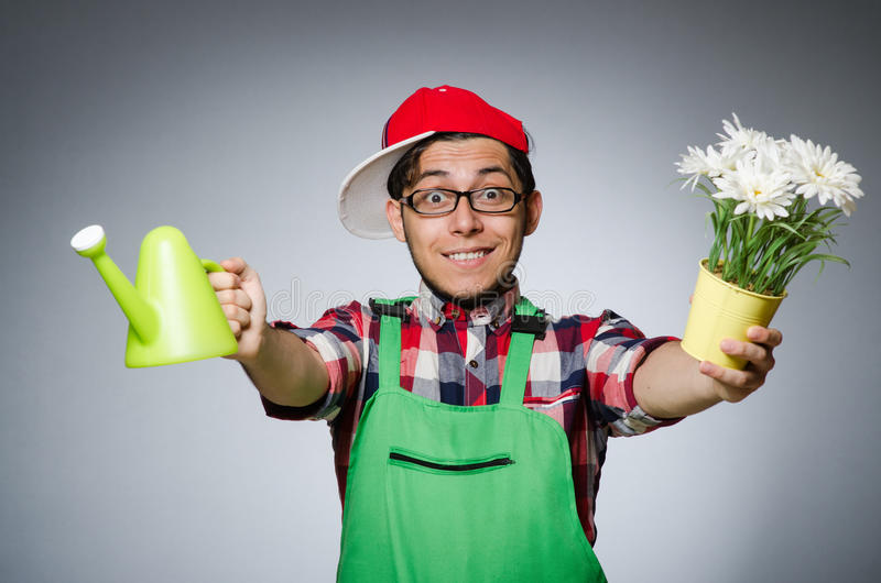 Funny man. With watering can royalty free stock image
